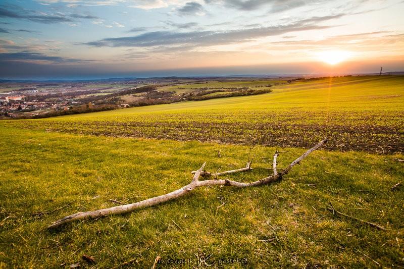 Stejný západ slunce, tentokrát ale se suchou větví, která ukazuje skutečný rozsah scény. Všimněte si také horizontu v horní třetině fotografie. Canon 5D Mark II, EF Canon 16–35mm F2,8 II USM, 1/50 s, F7,1, ISO 100, ohnisko 20 mm.