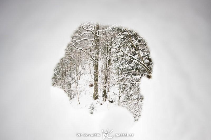 Průhled dírou ve sněhu. Během focení podobných snímků si dávejte pozor, ať vám ve finále fotoaparát nezůstane zasypaný pod sněhem. Canon EOS 40D, EF-S Canon 10–22 mm F3,5–4,5 USM, 1/13 s, F7,1, ISO 100, ohnisko 22 mm.