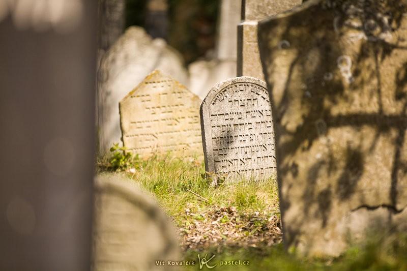 Ze židovského hřbitova v Mikulově mám spousty fotek, ale nakonec se do průvodce žádná nevešla. Canon 5D Mark II, Canon EF 70–200 mm F2,8 IS II USM, 1/640 s, F2,8, ISO 100, ohnisko 200 mm.