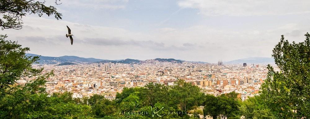 Panorama Barcelony z kopce Montjuic, složené ze tří záběrů. Racek létal okolo, tak jsem si počkal, až se bude hodit do kompozice fotografie.