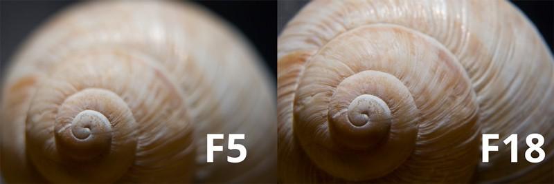Srovnání clony F5 a F18. V makro podmínkách je hloubka ostrosti stěží v řádu milimetrů, proto se používají vysoká clonová čísla. Mimochodem, ulita je na výšku podobně veliká jako snímač typu full frame (24 mm). Protože se ale na něj fyzicky nevešla celá, je zvětšení zjevně vyšší než 1:1 (odhadem cca 1,3:1). Canon 5D Mark III, Canon EF 24–70 mm F2, 8 USM, ohnisko 70 mm + tři mezikroužky 12 + 20 + 36 mm.