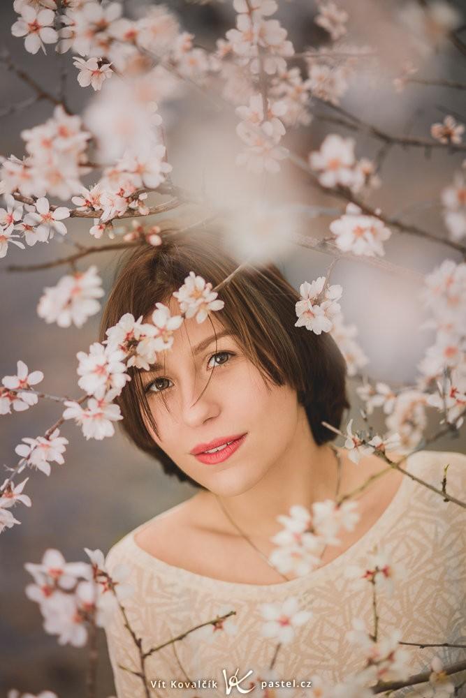 Jarní rozkvetlé stromy vytvářejí efektní fotografie. Canon 5D Mark III, Canon EF 85/1.8, 1/100 s, f/1.8, ISO 200, ohnisko 85 mm