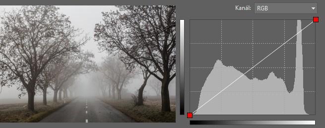 Vzorový obrázek a počáteční stav křivek.