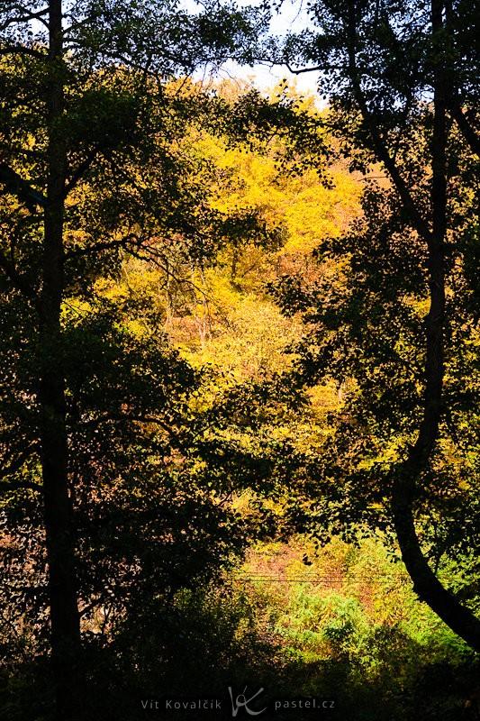 V dálce se skrývají podzimní barvy orámované černými siluetami stromů v popředí. Canon 40D, Sigma 18–50 mm F2,8, 1/50 s, F8,0, ISO 200, ohnisko 50 mm.