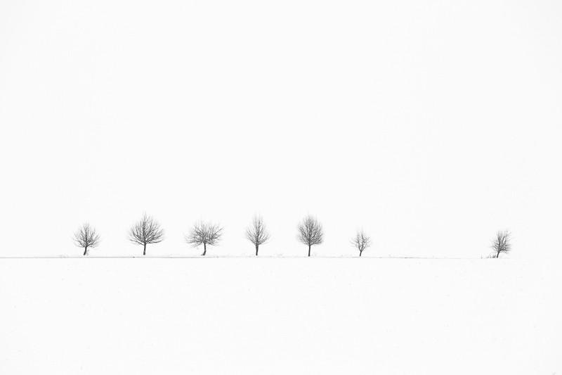 V zasněžené zimní krajině lze dosáhnout fotek, které připomínají uměle vytvořenou grafiku. Canon 5D Mark III, EF Canon 70–200 mm F2,8 IS II, 1/250 s, F8,0, ISO 100, ohnisko 200 mm.