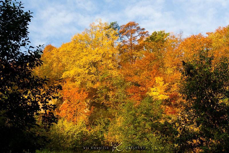 Někdy se otevře výhled na protější kopec, který je na podzim krásně zbarvený. Canon 40D, Sigma 18–50 mm F2,8, 1/60 s, F8,0, ISO 200, ohnisko 40 mm.