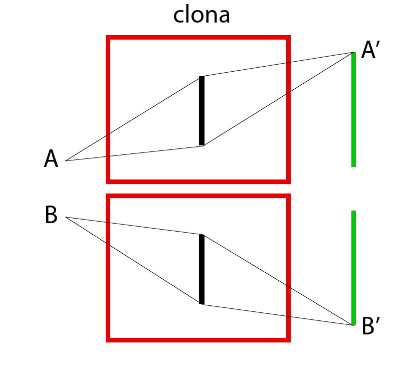 Průchod světla ze dvou bodů skrz objektiv.
