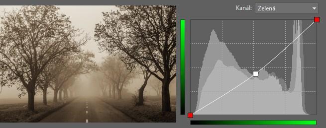 Neutrální sépiová vzniklá z čistě černobílé fotografie.